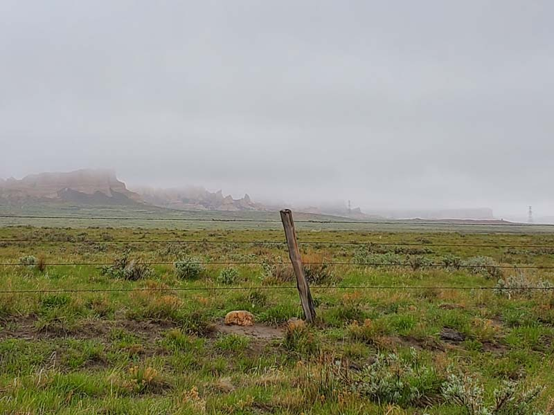 foggy-day-at-ranch